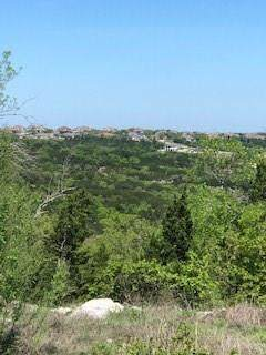 13207 Shady Mountain Dr, Leander, TX 78641 (#8157775) :: Douglas Residential