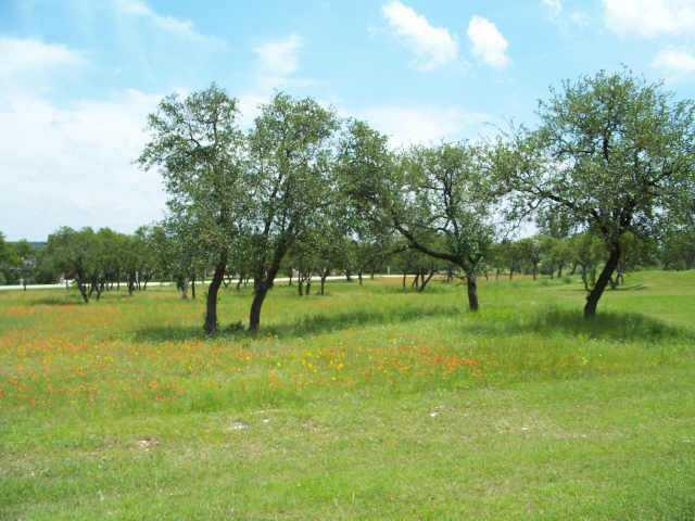 3001 Cliff Overlook, Spicewood, TX 78669 (#8162260) :: Ana Luxury Homes