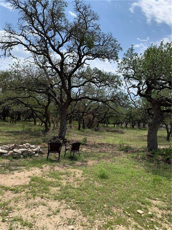 274 Ira Hill Ln, Dripping Springs, TX 78620 (#8208272) :: Realty Executives - Town & Country
