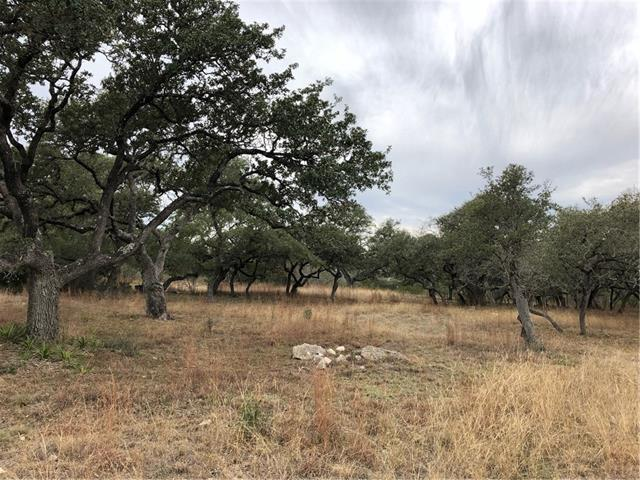 301 Napa Ct, Driftwood, TX 78619 (#8315603) :: Forte Properties