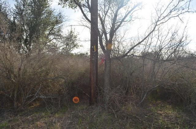 Lot 15 County Road 140, Burnet, TX 78611 (#8335152) :: Forte Properties