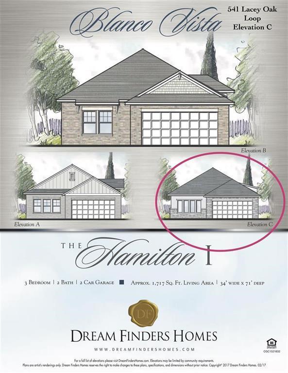 541 Lacey Oak Loop, San Marcos, TX 78666 (#8381199) :: Douglas Residential