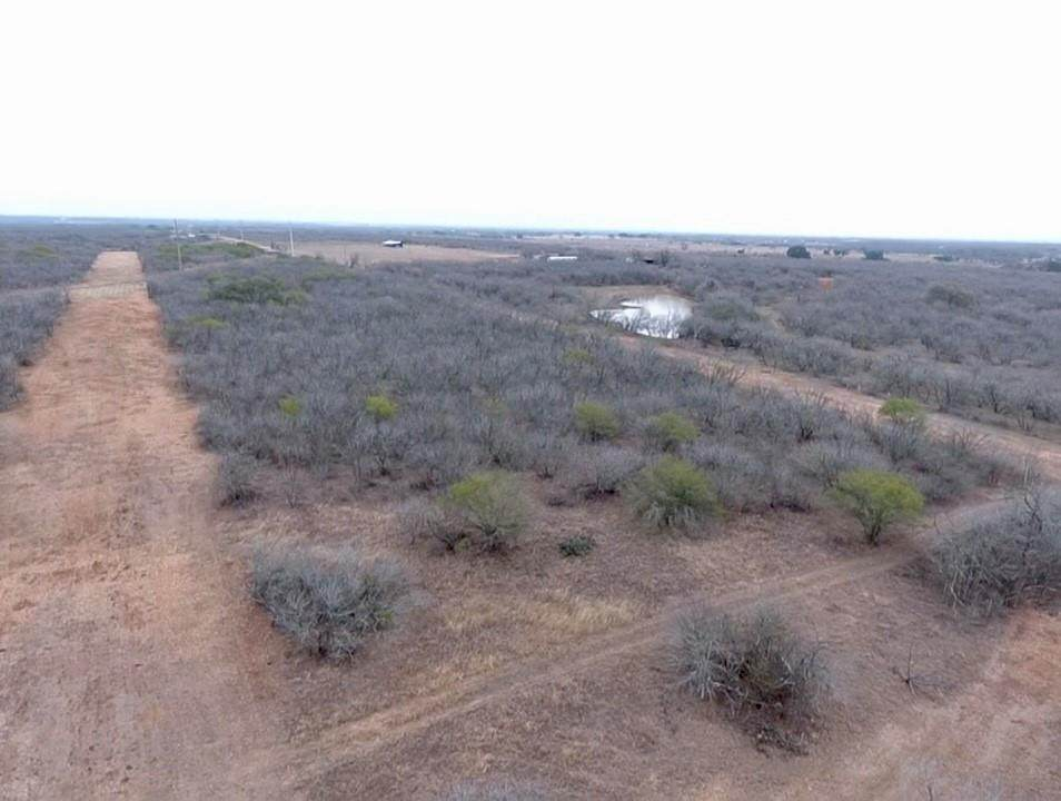 12.69 Acres TBD Pooley Rd - Photo 1