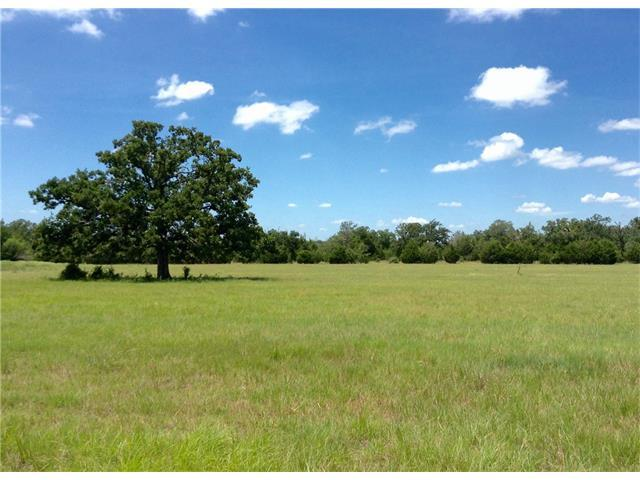 TBD Goehring Rd & Schott Rd, Ledbetter, TX 78946 (#8411381) :: The Perry Henderson Group at Berkshire Hathaway Texas Realty