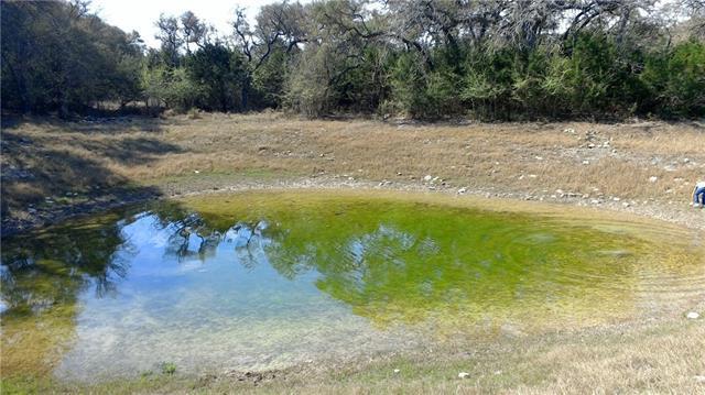 119 Riley Wood, Blanco, TX 78606 (#8437906) :: Ben Kinney Real Estate Team