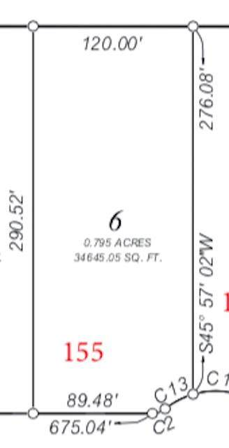 155 Little Loop, Cedar Creek, TX 78612 (#8463749) :: 12 Points Group