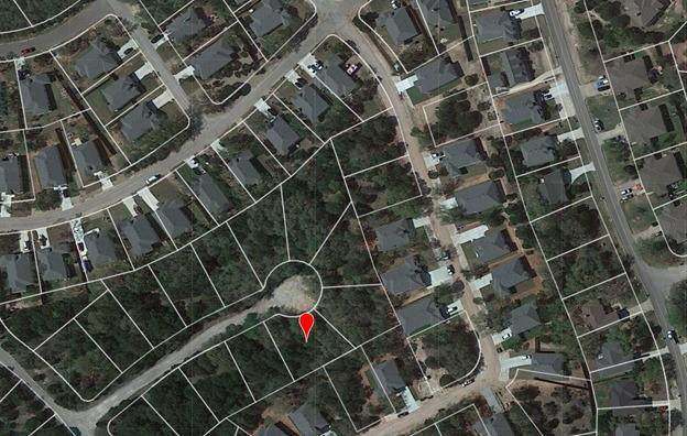 21603 Orlando Cv, Lago Vista, TX 78645 (#8498584) :: Papasan Real Estate Team @ Keller Williams Realty