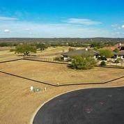 25632 Kahala Sunset Ct, Spicewood, TX 78669 (#8535069) :: Lauren McCoy with David Brodsky Properties