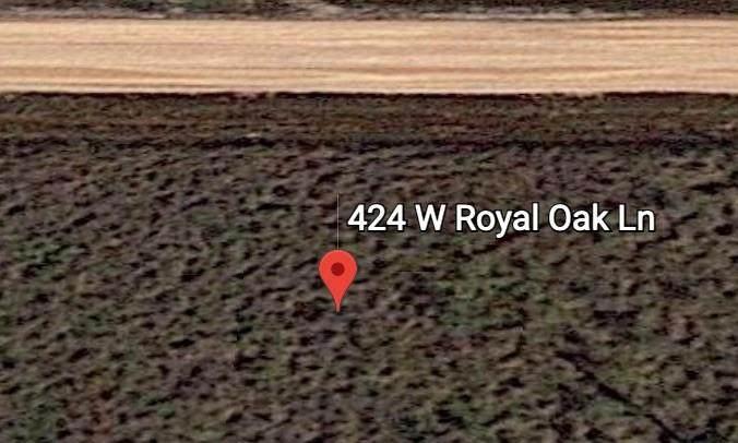 424 West Royal Oak Ln - Photo 1