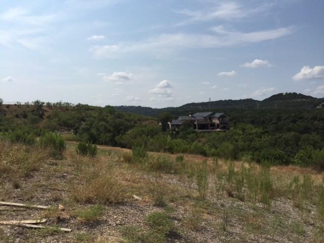 311 Bisset Ct, Austin, TX 78738 (#8583963) :: Forte Properties