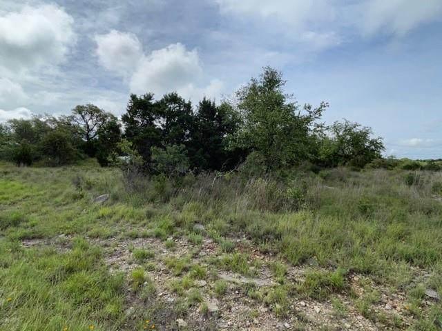 277 Star Grass, Spring Branch, TX 78070 (#8643714) :: Papasan Real Estate Team @ Keller Williams Realty