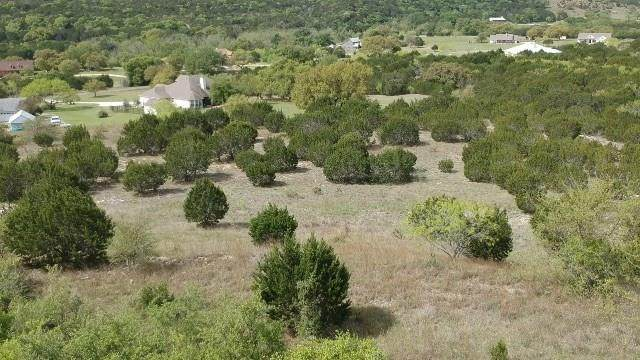 351 Whitewater Dr, Bertram, TX 78605 (#8660600) :: Front Real Estate Co.