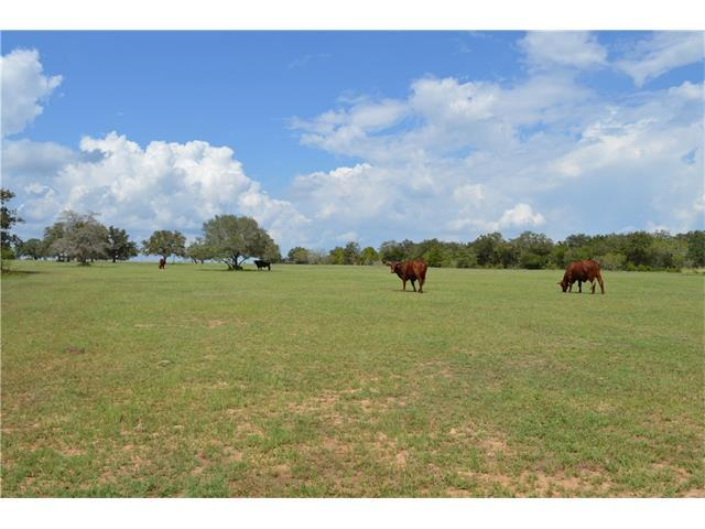 6840 Old Smithville Rd, Flatonia, TX 78941 (#8695966) :: Watters International