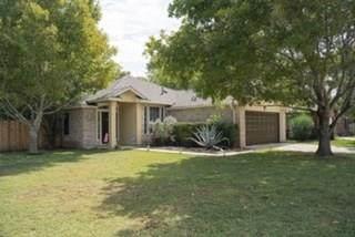 101 Llama, Kyle, TX 78640 (#8710455) :: Green City Realty