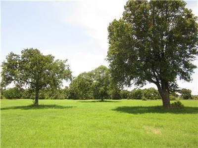 1000 Allen Road & Anchor Ranch Loop, Flatonia, TX 78941 (#8770764) :: The Smith Team