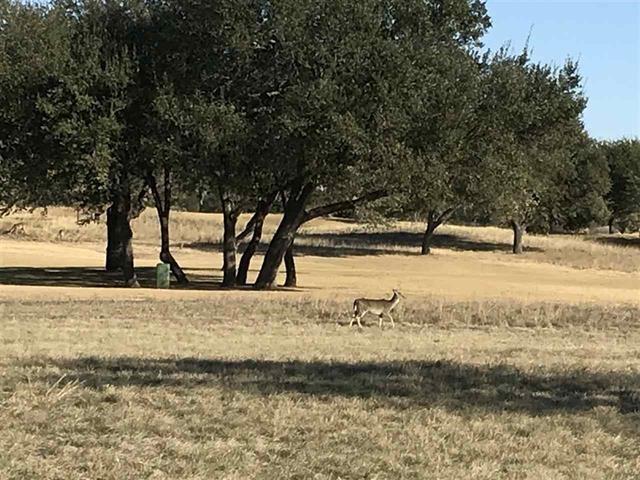 197 La Serena Loop, Horseshoe Bay, TX 78657 (#8787277) :: The ZinaSells Group