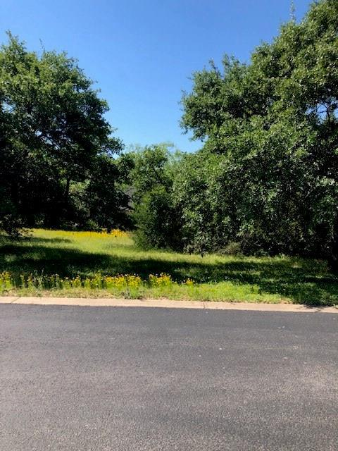 Lot 18 River Park Dr, Kingsland, TX 78639 (#8798831) :: Realty Executives - Town & Country