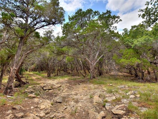 7913B Navajo Pass, Leander, TX 78641 (#8806238) :: Forte Properties