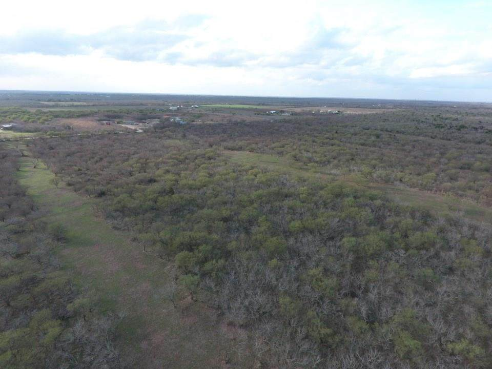 Tract S Dry Creek Rd - Photo 1