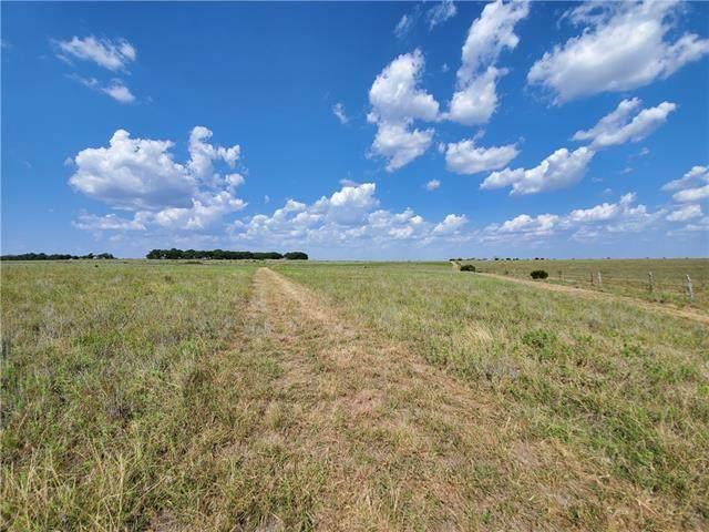00 Cr 2200, Lampasas, TX 76550 (MLS #8859999) :: Vista Real Estate