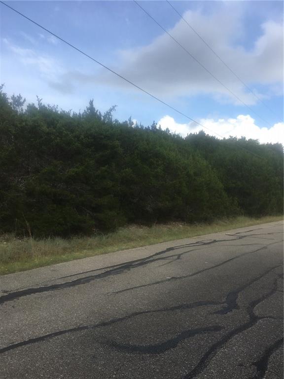 5104 Moss Pt, Lago Vista, TX 78645 (#8892166) :: Realty Executives - Town & Country