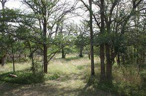 106 Enchanted Woods Trl, Buda, TX 78610 (#8929992) :: Green City Realty