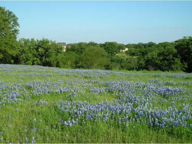 26006 Masters Pkwy, Spicewood, TX 78669 (#8957980) :: The ZinaSells Group