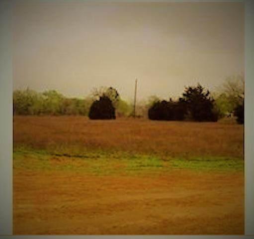 13606 Fm 969, Austin, TX 78724 (#8997074) :: Papasan Real Estate Team @ Keller Williams Realty