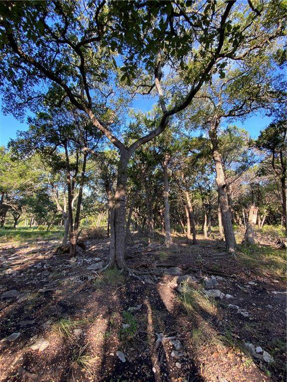 Wimberley, TX 78676 :: Resident Realty
