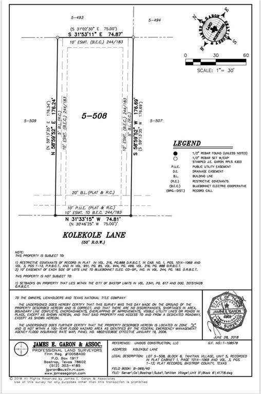 320 Nene Ln, Bastrop, TX 78602 (#9178381) :: The Heyl Group at Keller Williams