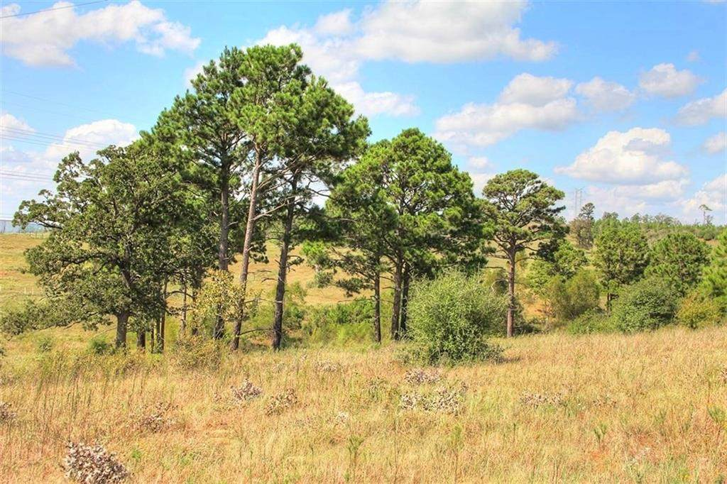 TBD TRACT 9 Gotier Trace Rd - Photo 1