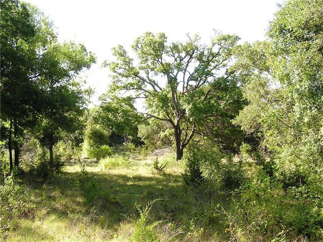 11923 County Road 200, Bertram, TX 78605 (#9230612) :: Papasan Real Estate Team @ Keller Williams Realty