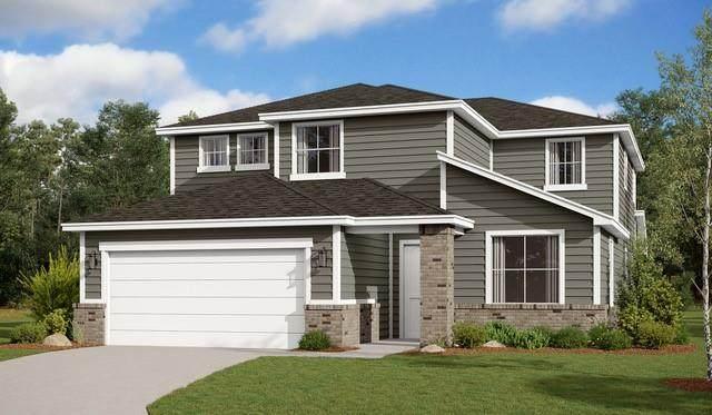 3701 Donald Dr, Seguin, TX 78155 (#9231444) :: Papasan Real Estate Team @ Keller Williams Realty