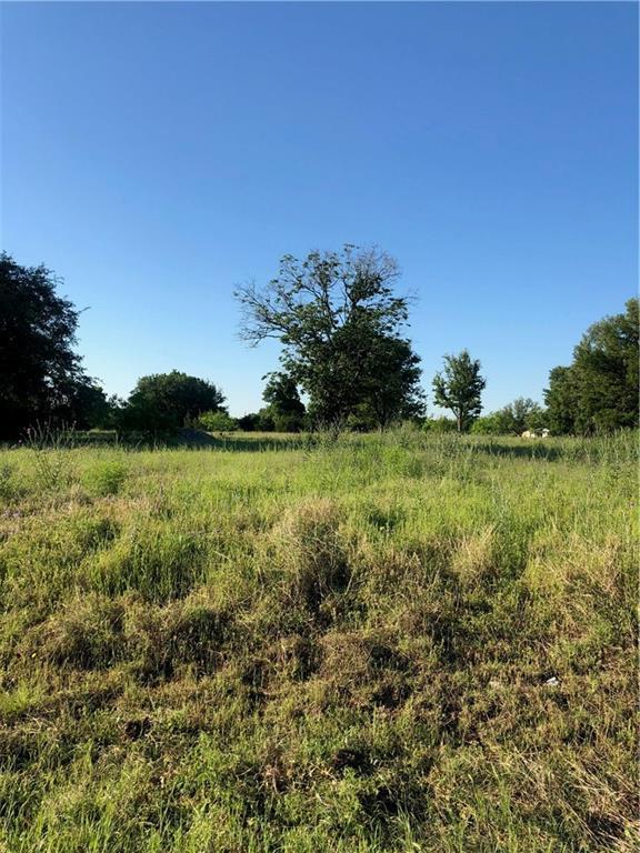 1361 E. Creekview Dr, Salado, TX 76571 (#9247221) :: The Heyl Group at Keller Williams