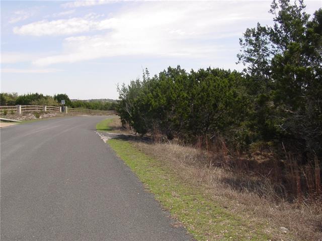 18215 Shepherds Corral, Austin, TX 78620 (#9256939) :: Forte Properties