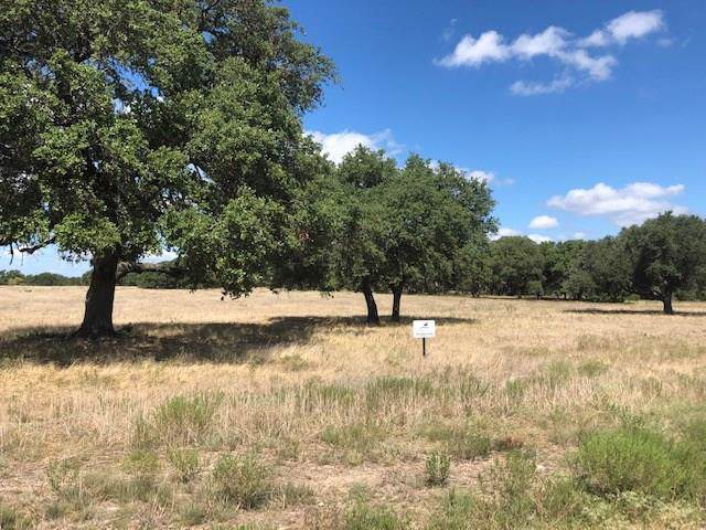 Lot # 4 North Waterbuck Way, Lampasas, TX 76550 (#9294389) :: The Perry Henderson Group at Berkshire Hathaway Texas Realty