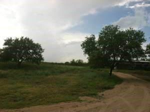 11331 Camino Real, Kyle, TX 78640 (#9320448) :: RE/MAX IDEAL REALTY