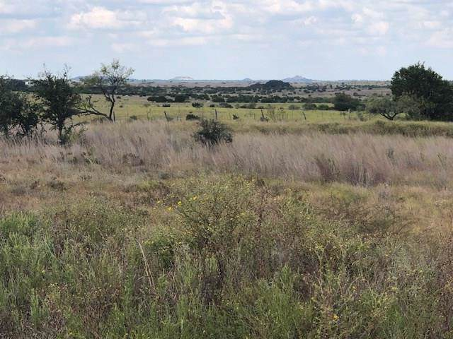 106 County Rd 106, Lampasas, TX 76550 (#9328023) :: The Perry Henderson Group at Berkshire Hathaway Texas Realty