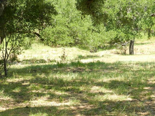 749 Mystic Shores Blvd, Spring Branch, TX 78070 (#9331331) :: Forte Properties