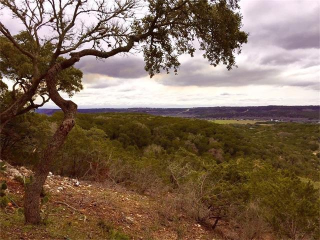 156.856 acres of Vista Verde Path, Wimberley, TX 78676 (#9346395) :: The ZinaSells Group