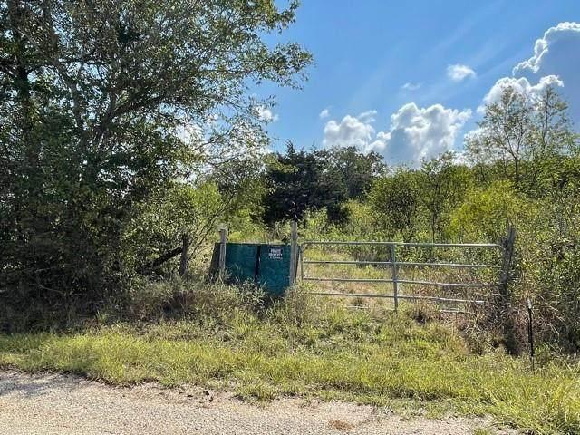 177 Fiebrich Rd, Rosanky, TX 78953 (#9405955) :: Papasan Real Estate Team @ Keller Williams Realty