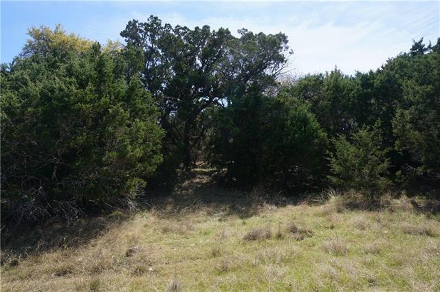7416 Spanish Oak Dr, Lago Vista, TX 78645 (#9451343) :: Forte Properties