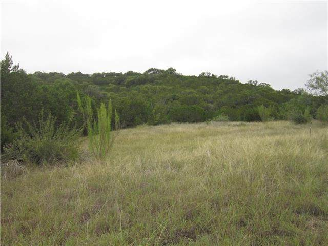 69 Montana Creek Xing Dr, Marble Falls, TX 78654 (#9453106) :: 12 Points Group