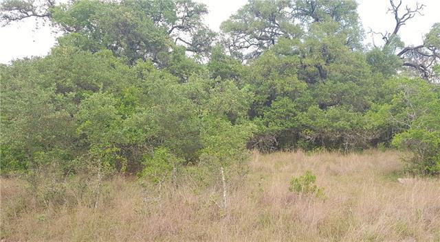 134 Hidden Pointe, New Braunfels, TX 78132 (#9595063) :: Forte Properties