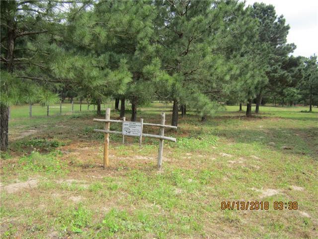147 Oak Leaf Dr, Bastrop, TX 78602 (#9608100) :: Papasan Real Estate Team @ Keller Williams Realty
