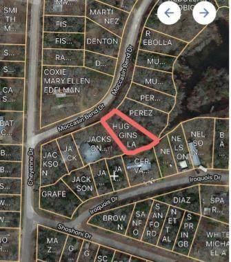 TBD Moccasin Bend Dr, Smithville, TX 78957 (#9631835) :: Papasan Real Estate Team @ Keller Williams Realty