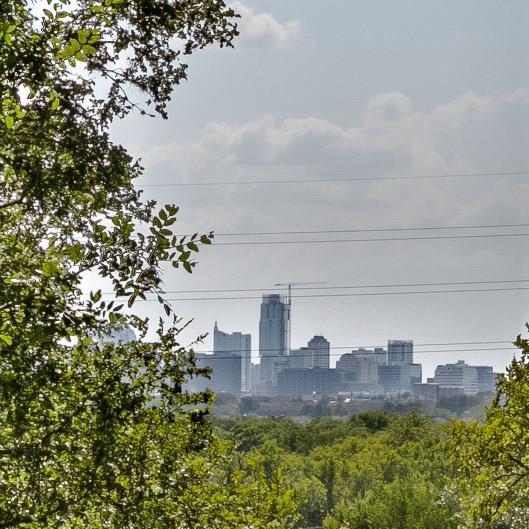 5224 Ledesma Rd, Austin, TX 78721 (#9654798) :: The ZinaSells Group