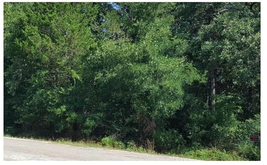 TBD Choctaw Trail Dr - Photo 1