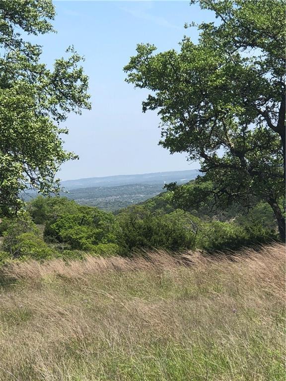 Lot 100 Brushy Ridge Trl, Blanco, TX 78606 (#9786887) :: The Perry Henderson Group at Berkshire Hathaway Texas Realty