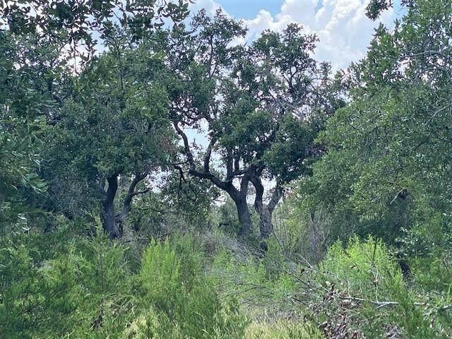208 Stonegate Ln, Dripping Springs, TX 78620 (#9807230) :: Papasan Real Estate Team @ Keller Williams Realty